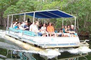 Black River Safari Tour